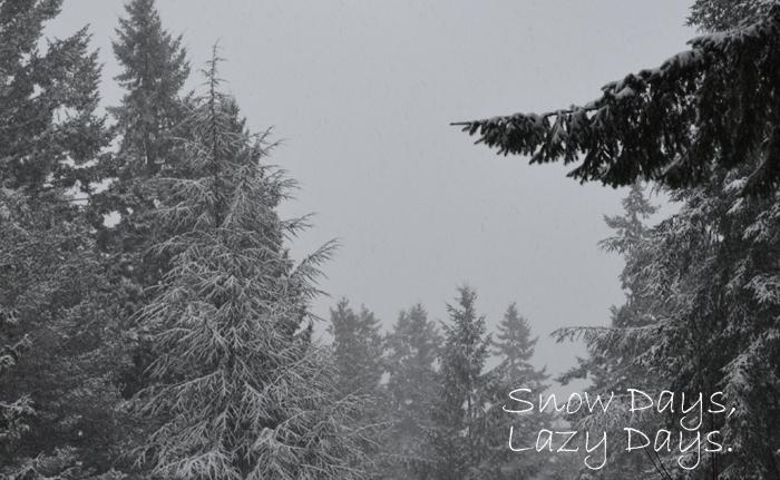 snow_days_lazy_days